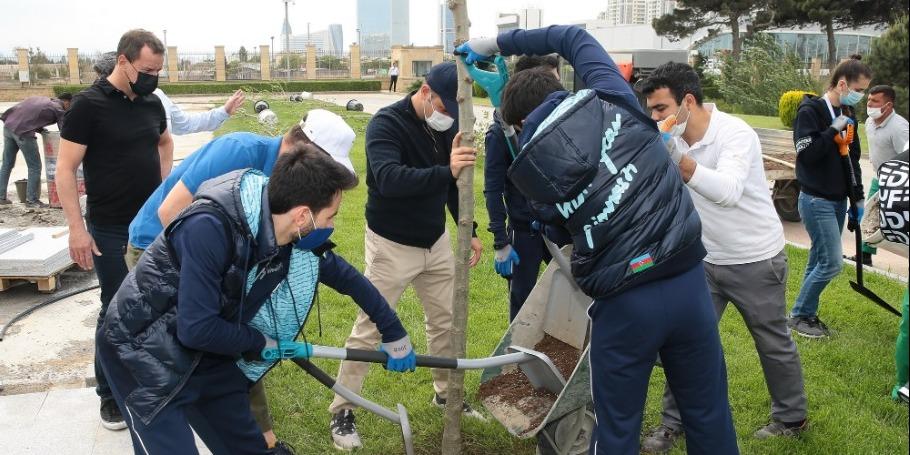 В преддверии 16-го чемпионата мира по аэробной гимнастике в Баку прошла акция по посадке деревьев (ФОТО)