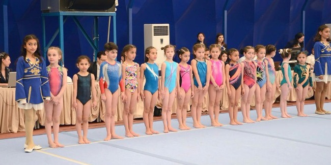 The winners were determined among female gymnasts